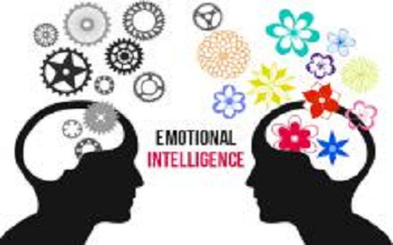Master in Emotional Intelligence & Human Relations (MEI&HR)